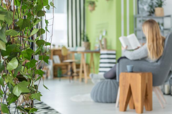 Comoda poltrona inserita all'interno di un home office decorato con piante e accessori