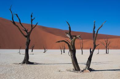 Da Città del Capo alla Namibia attraverso il deserto del Namib