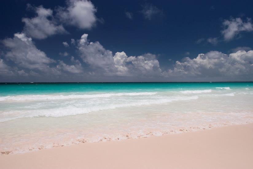 Le spiagge rosa di Pink Sands Beach