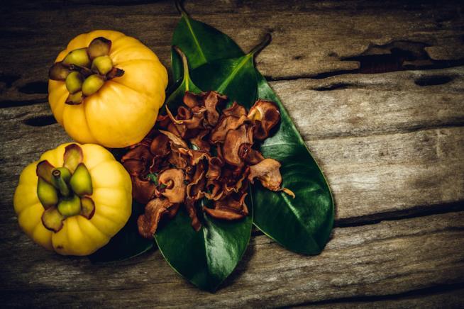 Frutto con foglie della garcinia cambogia