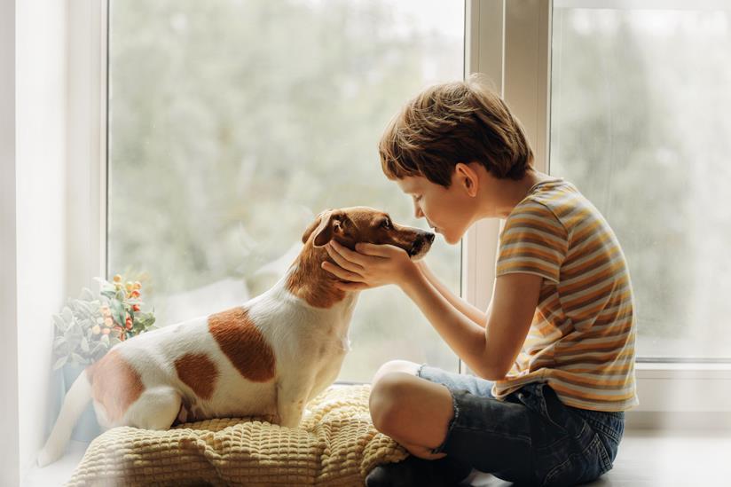 Bambino bacia il cane sul nasino