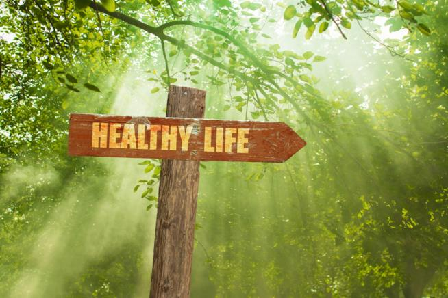 Cartello in una foresta con la scritta Healthy Life