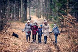 Una famiglia nel bosco