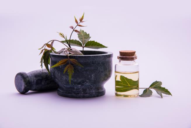 Ciotola con accanto una confezione di olio di neem