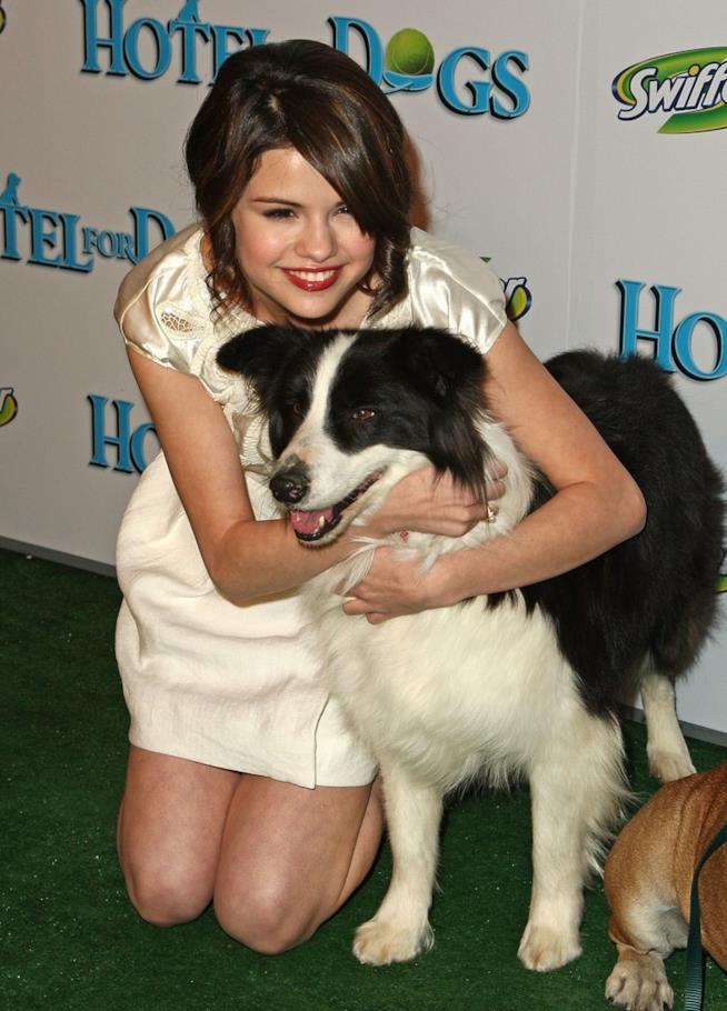 Selena Gomez abbraccia un cane