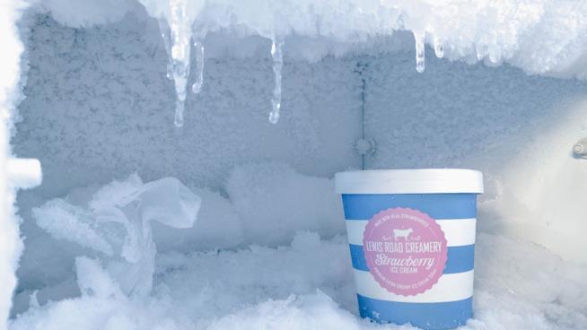 Borsa frigo: dove comprare online
