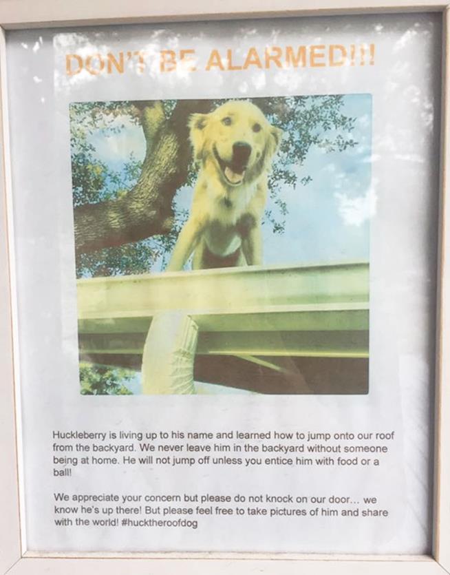 La nota che i padroni di Huck hanno appeso per spiegare la divertente abitudine del loro cane