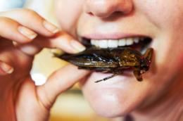 La bocca di una donna che sta per mangiare un insetto