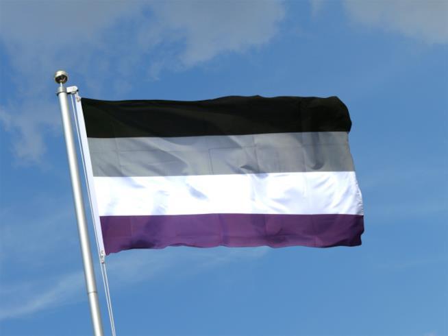 La bandiera con i colori della comunità asessuale