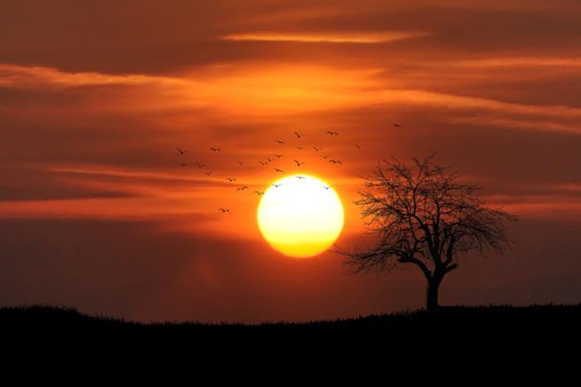 Paesaggio di campagna al tramonto