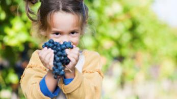 Bambina con uva