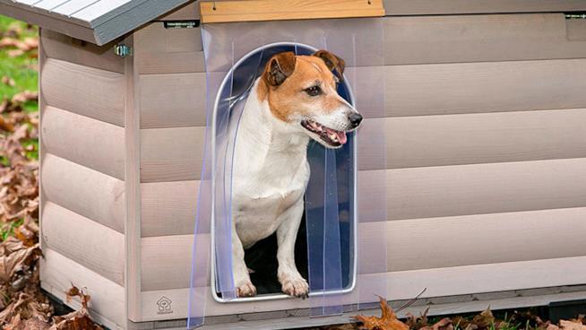 le migliori cucce da esterno per il tuo cane