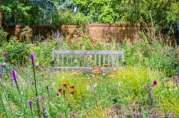 Un giardino con una panchina e fiori selvatici