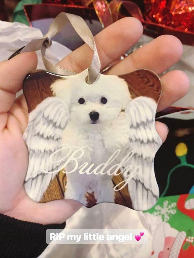 Demi Lovato e la decorazione dedicata al cane Buddy