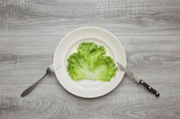 Un piatto che contiene una foglia d'insalata
