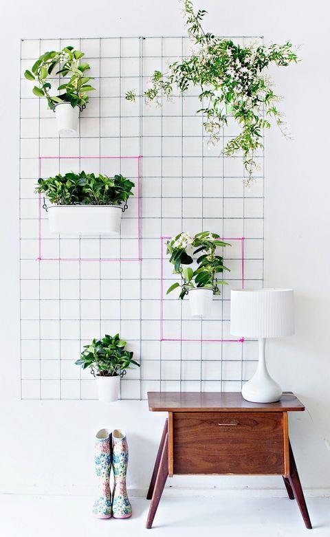 Supporto appeso alla parete per sostenere le piante