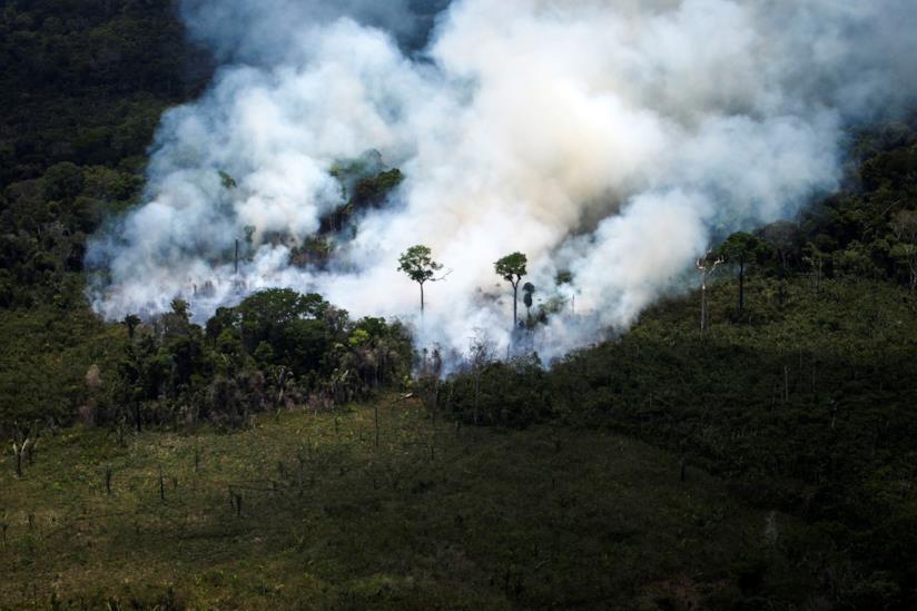 La foresta dell'Amazzonia in fiamme.