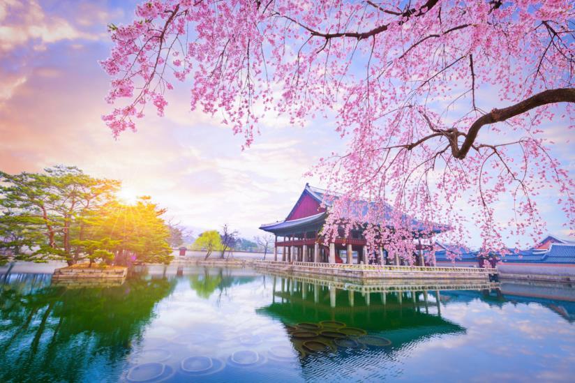Romantica Seul: il Palazzo di Gyeongbokgung