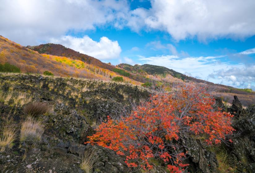 Trekking sulle pendici del Vulcano Etna