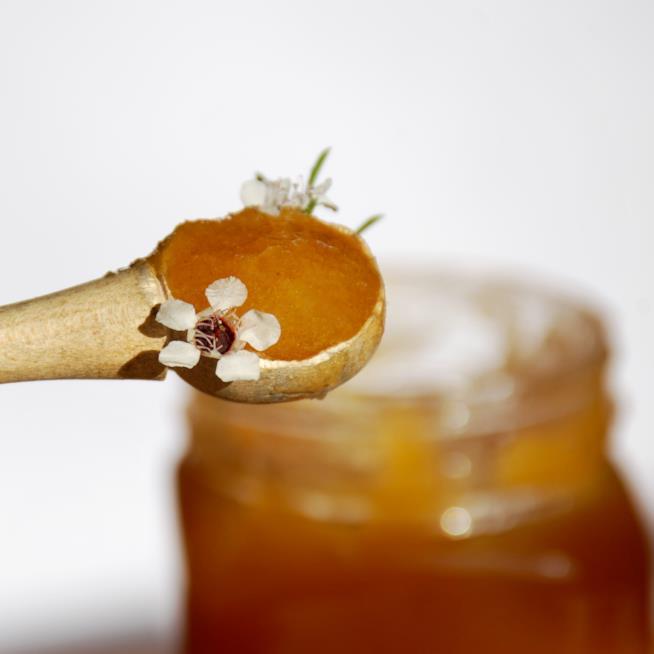 Conservare il miele di manuka