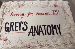 Grey's Anatomy sta per tornare con la stagione 13
