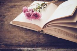 Libro con un fiore adagiato sopra