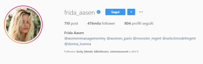 Profilo Instagram Frida Aasen