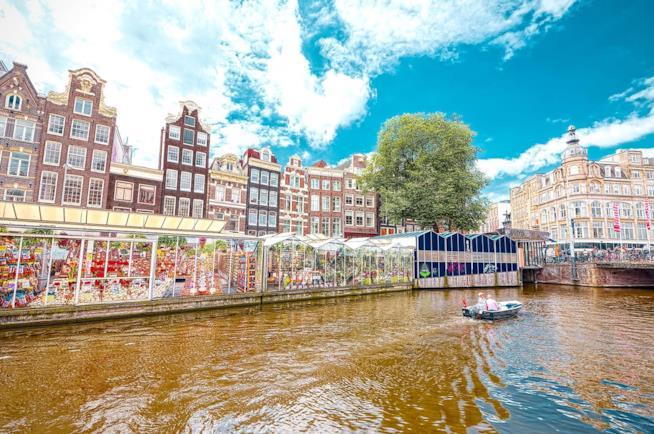 Il mercato di fiori ad Amsterdam.