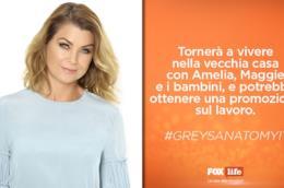 Cosa accadrà ai personaggi di Grey's Anatomy nella stagione 12