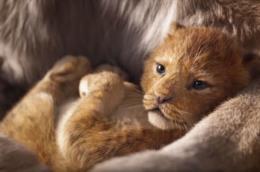 un fotogramma del trailer de Il re leone