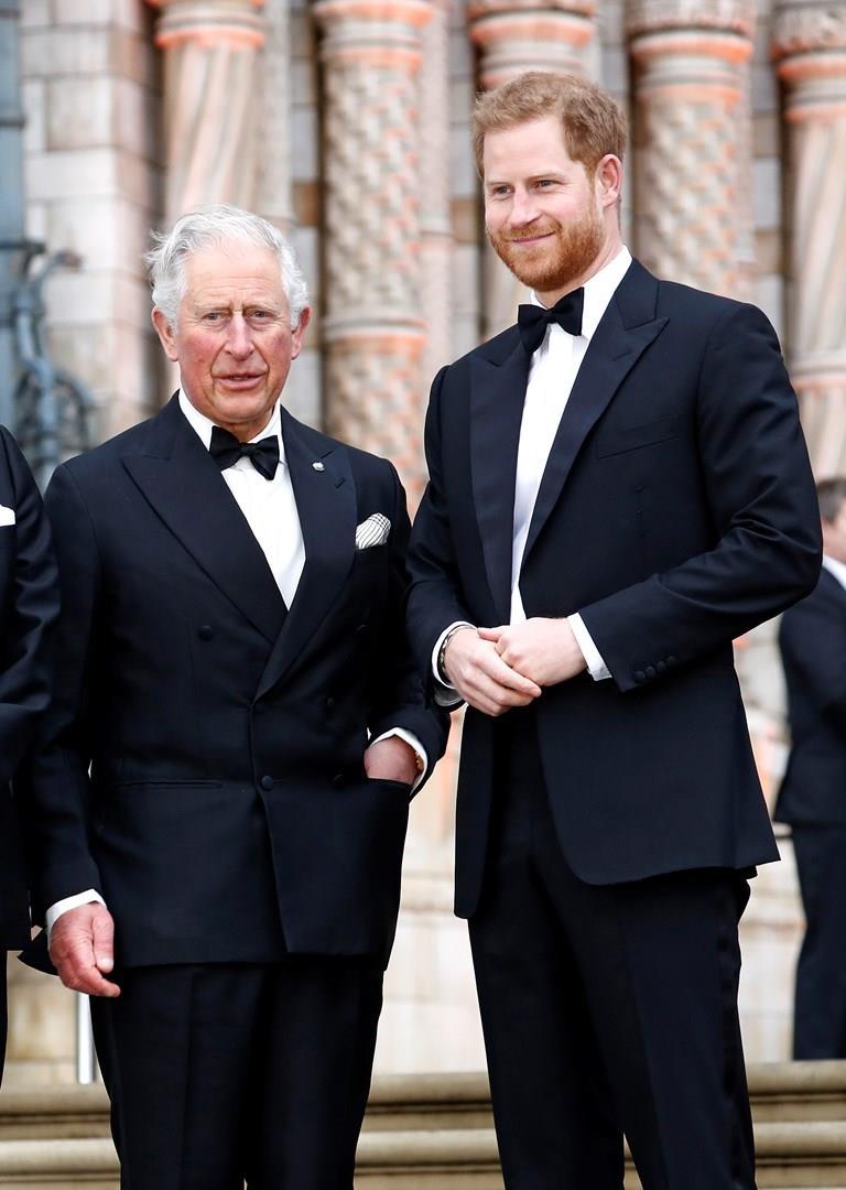 Il Principe Carlo e il Principe Harry