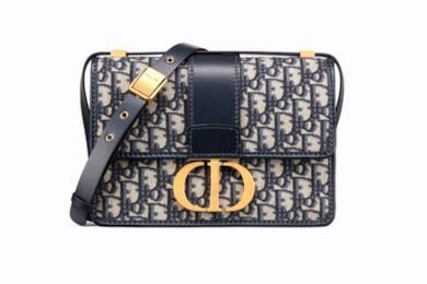 Borsa 30 Montaigne Dior Oblique