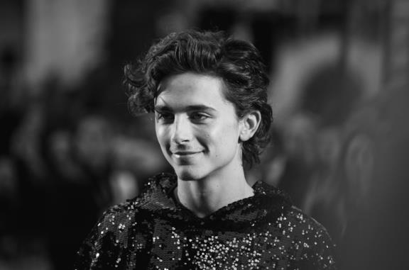 Timothée Chalamet in primo piano sul red carpet