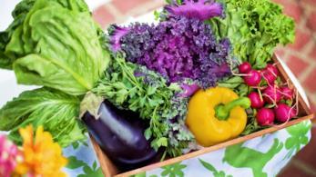Verdure, dieta vegetariana