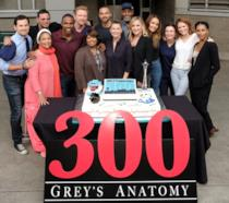 Il cast di Grey's Anatomy 14