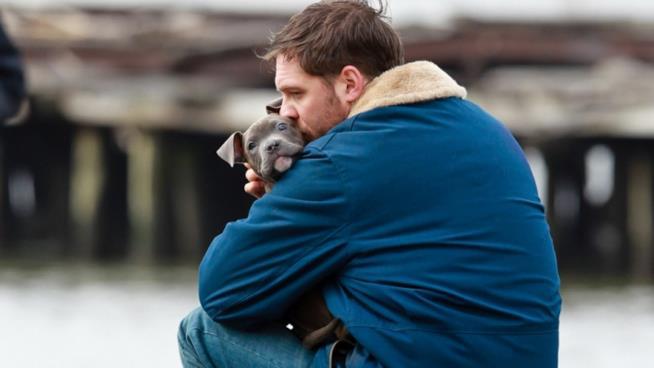 Tom Hardy bacia un cucciolo che tiene in braccio