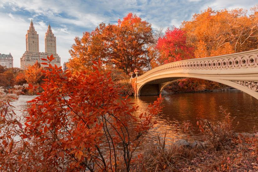 Central Park e la magia del foliage newyorkese