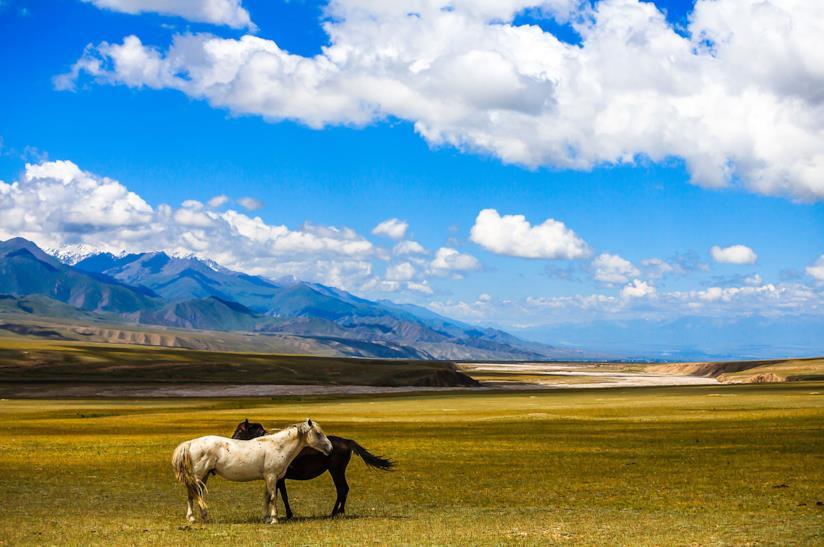 Viaggio con amici in Asia centrale