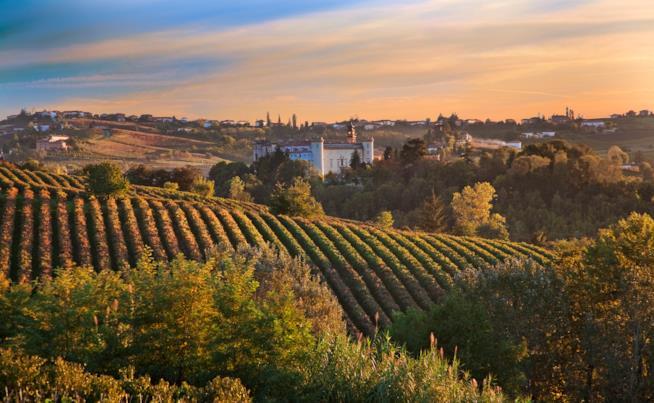 In giro per il Piemonte a Costigliole d'Asti
