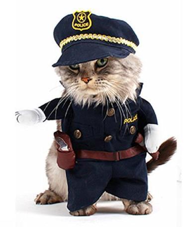 Costume da Poliziotto Gatto
