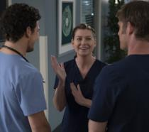 Meredith, Link e Andrew