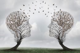 Un'immagine di due alberi a forma di volti che condividono i pensieri grazie agli uccelli