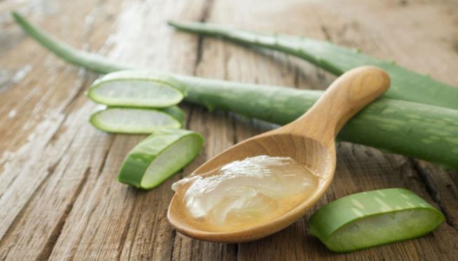 Il gel della pianta è utile per le infiammazioni della pelle e le dermatiti
