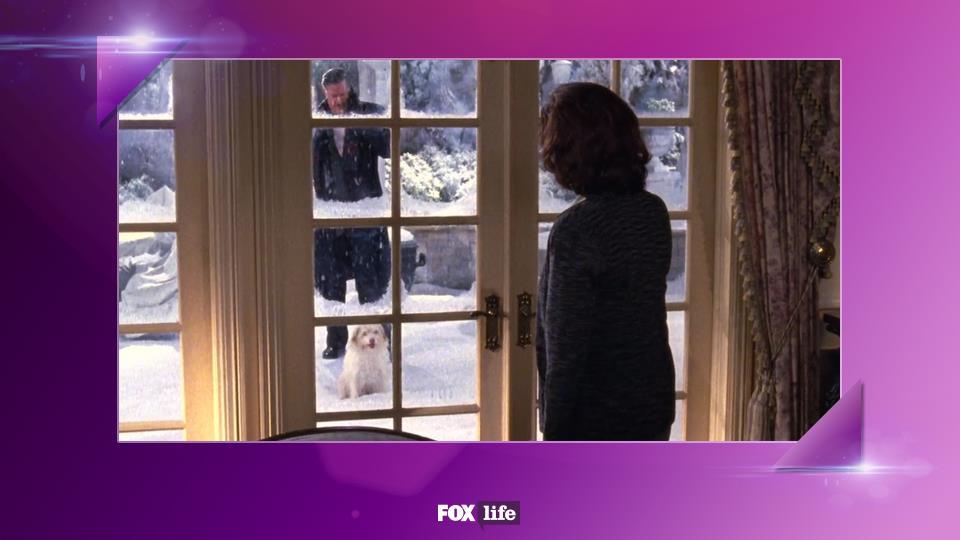 S05-E11: Un tocco di tenerezza con il cagnolino trovatello portato a casa da Richard