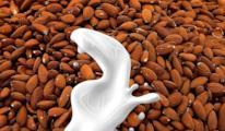 Una guida per scoprire le proprietà, i benefici e le controindicazioni del latte di mandorla