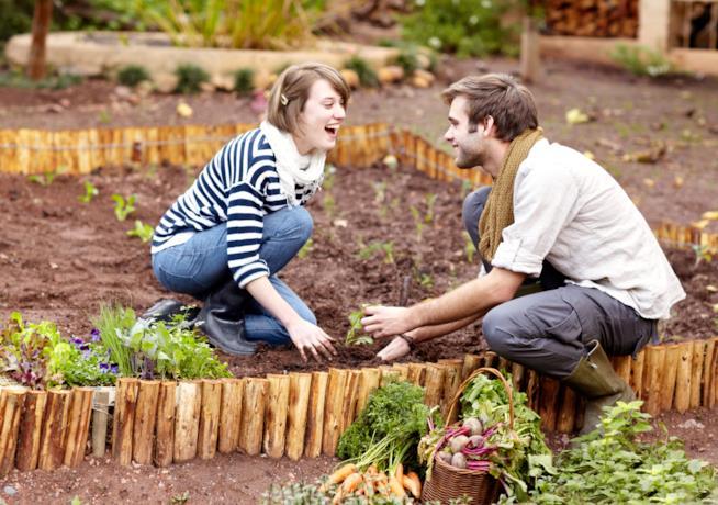 Un ragazzo e una ragazza sorridono coltivando in un orto privato