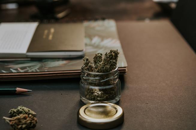 Cannabis in un vaso di vetro su un tavolo