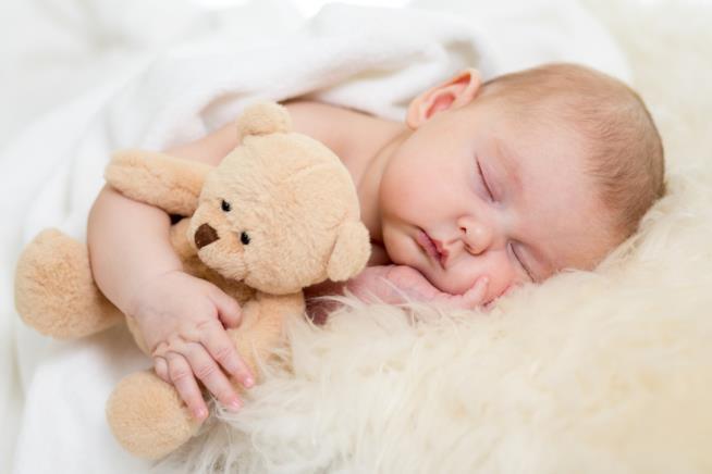 Neonato dorme con l'orsetto