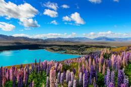Panorama del lago Tekapo in Nuova Zelanda