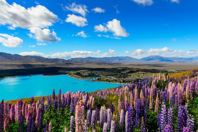 Nuova Zelanda meta per viaggiare da sola